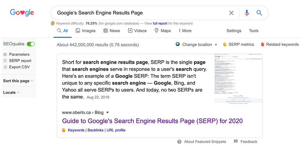Google's Search Engine Results Page