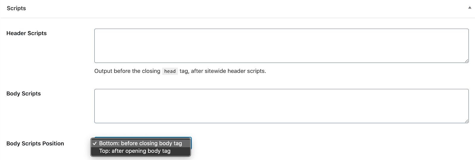 Header & Footer Script Fields