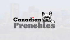 Canadian Frenchies Home