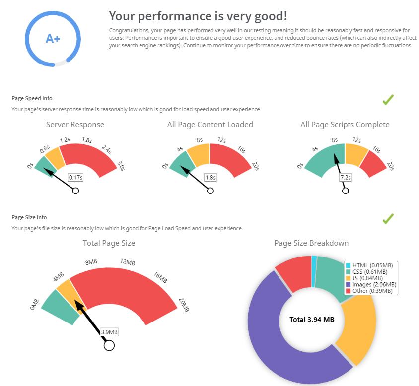SEO Audit / Performance Score